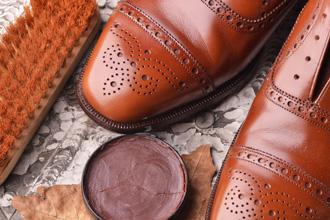 anteprima_gatto_calzature